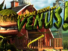 Игровой слот It Came From Venus: играть бесплатно