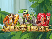 Игровой аппарат Wild Turkey: играть бесплатно